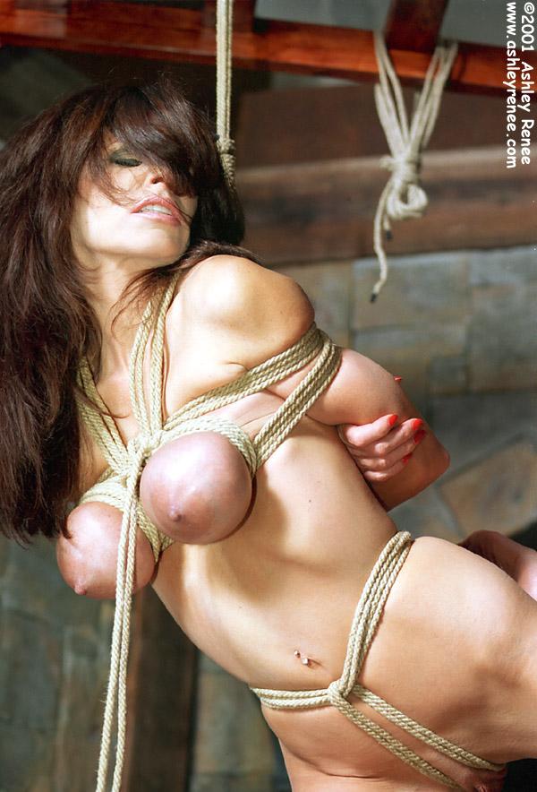 Diary of bondage slave assslave yoga 3