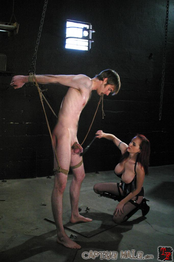 Female domination bondage videos