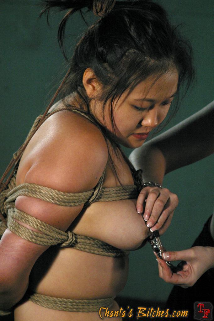 thermen rhein main gebiet sex shops stuttgart