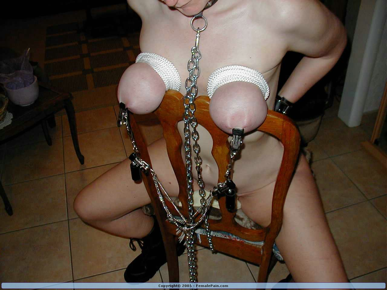Female domination bondage videos have
