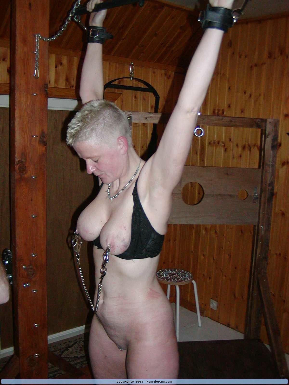 Porn galleries Fucking machine orgasms