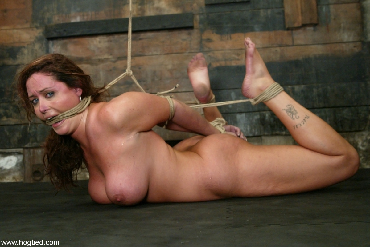 bdsm equment restraints hogtied