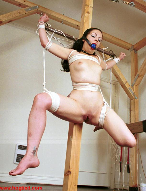 She Domination program bondage