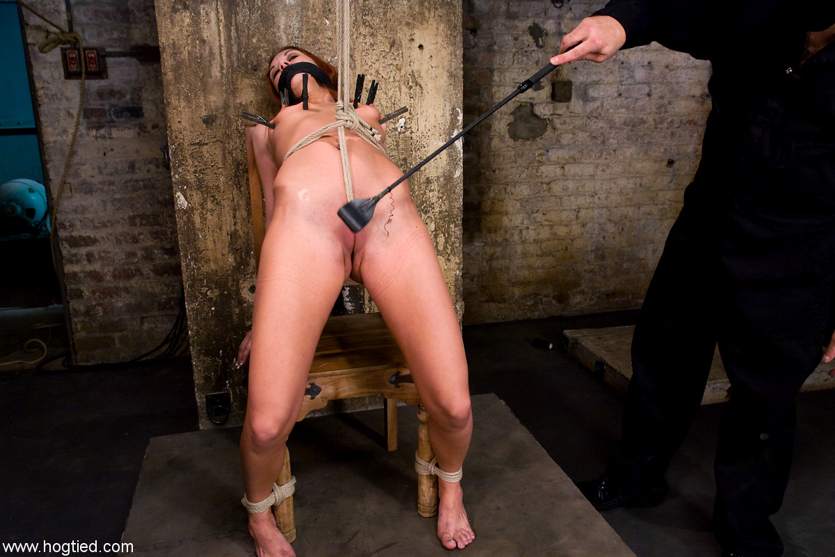 Free bdsm stories whipped her asshole