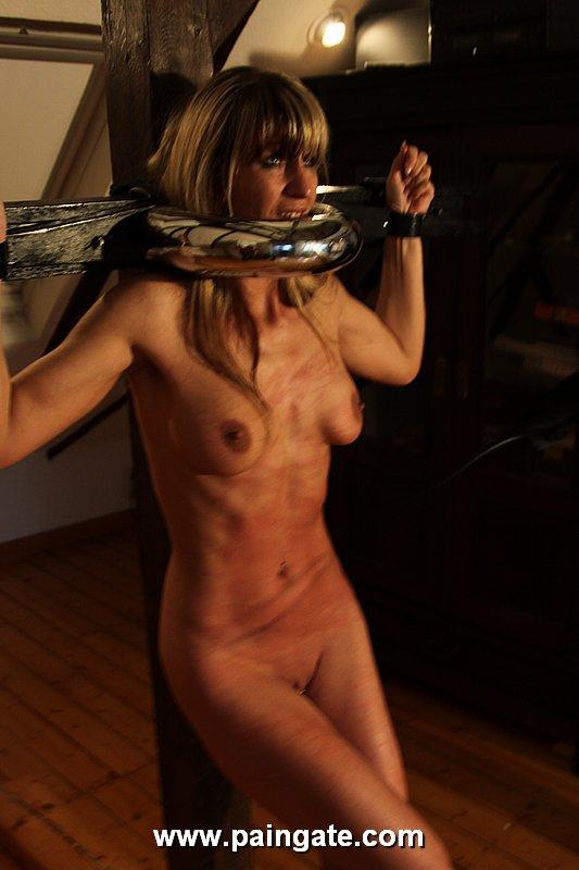 Submissive male domination