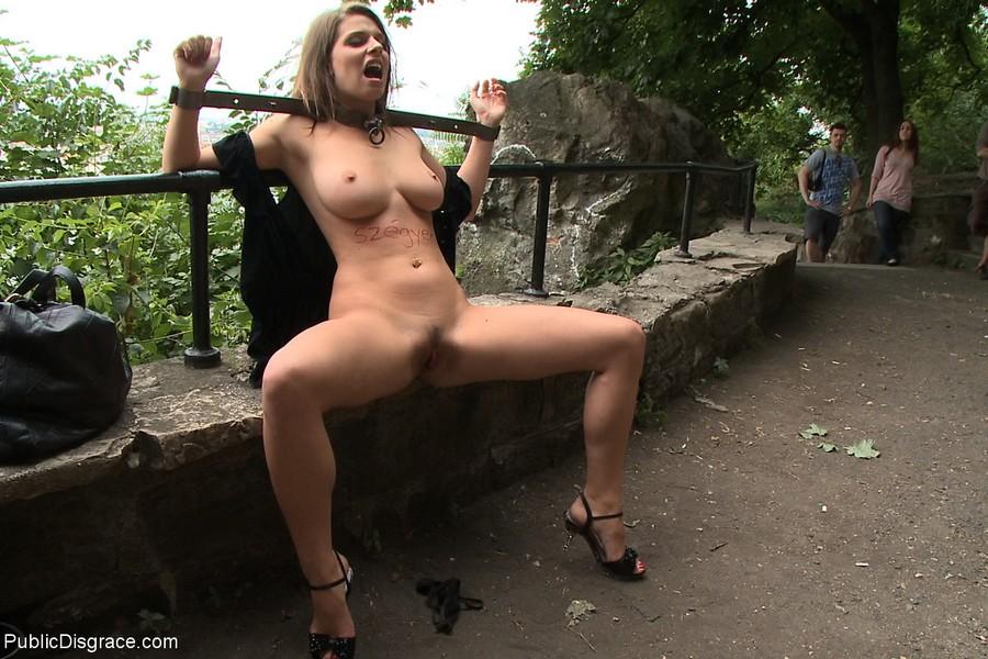 Free public humiliation sex
